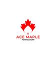 ace maple logo design