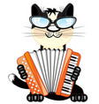 cat plays on accordeon vector image