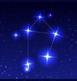 constellation libra in night starry sky vector image vector image