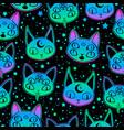 cute cartoon witchcraft cat head seamless vector image