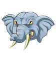 mascot head an angry elephant vector image vector image
