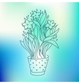 Narcissus in flowerpot sketch drawing vector image vector image