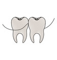 teeth with dental floss between them in colored vector image vector image