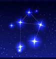 the constellation libra in the night starry sky vector image
