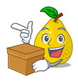 with box bunch cartoon of juicy yellow quinces vector image