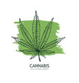 cannabis logo template hand drawn hemp leaf vector image