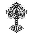 celtic tree life monochrome weaved ornament vector image vector image