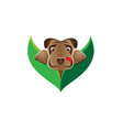 dog pops out from bushes vector image