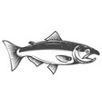 salmon icon isolated on white background seafood vector image