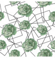 seamless pattern with succulents and frames vector image