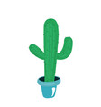 cactus plants cacti isolated on white background vector image vector image