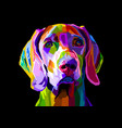colorful weimaraner dog on pop art style vector image vector image