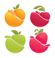 fruit splashes vector image vector image