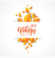 orange bright leaves background vector image vector image