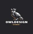 owl logo- emblem design vector image vector image