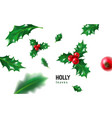 realistic holly ilex with berry and leaves vector image vector image