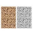 seamless micro bone structure in design vector image