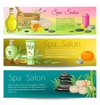 Spa Salon Banners Collection vector image vector image