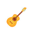 acoustic guitar string instruments isolated on vector image vector image