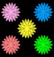 Colorful flowers isolated on black background set vector image vector image