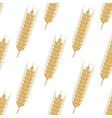 Golden ears of wheat seamless pattern vector image