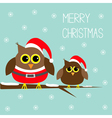 Two cute owls Santa Claus costume hat Snowflakes vector image vector image