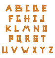 wooden alphabet set with all letters vector image vector image