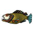Zentangle stylized Fish vector image vector image