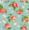 apple pattern with daisy autumn fruits leaves vector image vector image