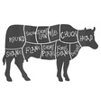 Beef cuts diagram butchering vector image vector image