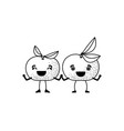 white background of monochrome pair of tangerine vector image vector image