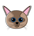 cute cat avatar sketch vector image vector image