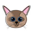 cute cat avatar sketch vector image