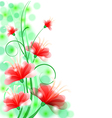 flower beauty back vector image
