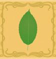 apple leaf on vintage background vector image vector image
