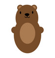 brown bear toy icon symbol vector image