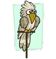 cartoon funny white parrot icon vector image vector image