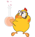 Chicken the chemist cartoon vector image