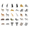 different animals cartoonmonochrom icons in set vector image