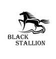 Horse show symbol with purebred stallion at a trot vector image vector image