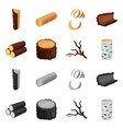 isolated object of tree and raw icon set of tree vector image vector image