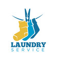 laundry icon or laundromat template of vector image vector image