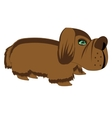Small dog on white background vector image vector image