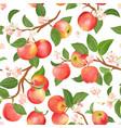 boho botanical apple seamless pattern vector image vector image