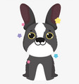 cute dog breed french bulldog domestic cartoon vector image