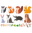 funny wood animals wild forest animal happy vector image