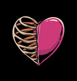 heart and skeleton vector image