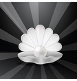 Pearl in shell vector image vector image