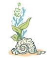 Sea shells algae hand drawn sketch style