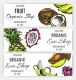 banner fruit for eco shop vector image vector image